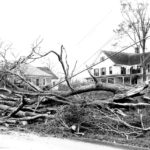 This was the scene all across Mansfield following the hurricane that passed through New England on September 21, 1938. Behind the rubble of fallen trees in this photograph stands the Town's Office building and Town Hall, now our museum.