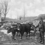 Yankee Farmer postcard by Hiram Fenn, c. 1900